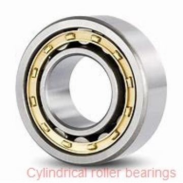 SKF RNU 205 ECP cylindrical roller bearings