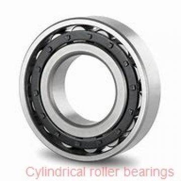75 mm x 160 mm x 55 mm  NKE NJ2315-E-TVP3+HJ2315-E cylindrical roller bearings