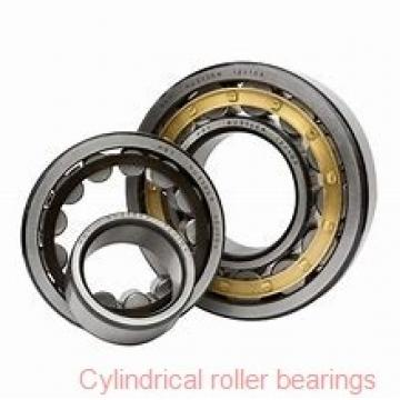 Toyana NP19/600 cylindrical roller bearings