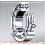 105 mm x 225 mm x 49 mm  NSK 1321 self aligning ball bearings